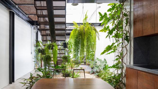 thiết kế nhà tối giản trong mùa hè - v11
