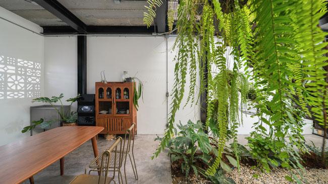 thiết kế nhà tối giản trong mùa hè - v12